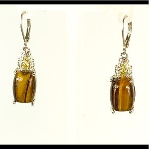 South African Tigers Eye Earring